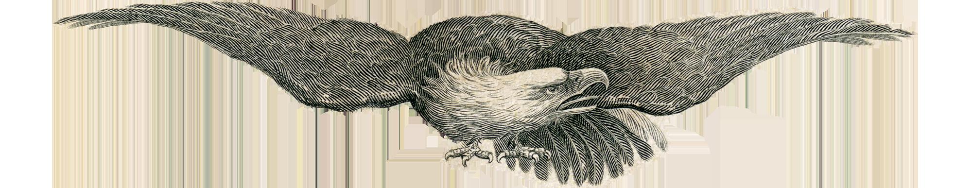Historical Americana Co Logo